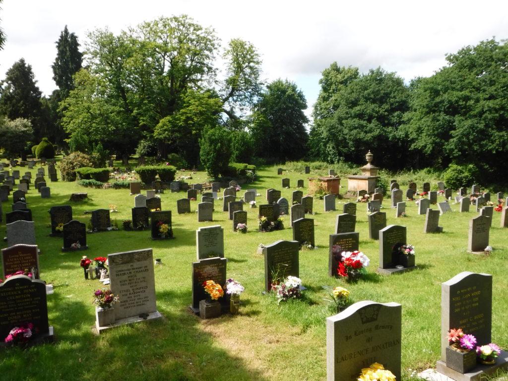 Grey's Anatomy in a Country Churchyard