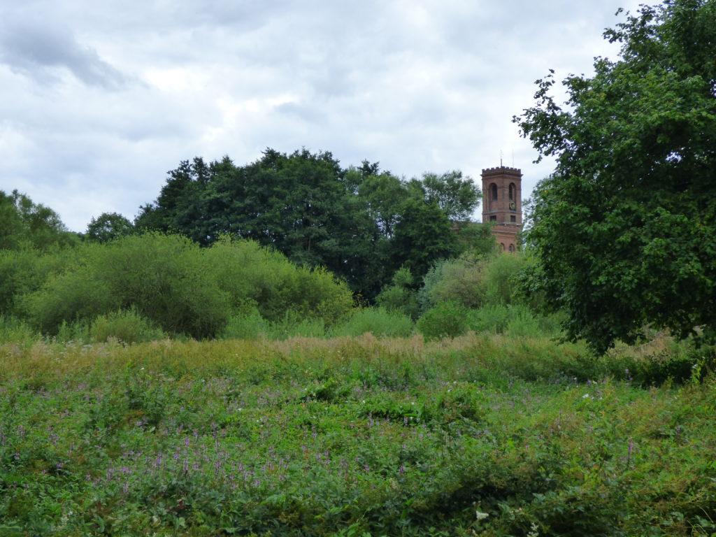 Bishop's Field Nature Reserve